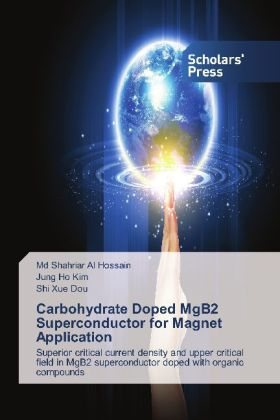 Carbohydrate Doped MgB2 Superconductor for Magnet Application   Dodax.ch