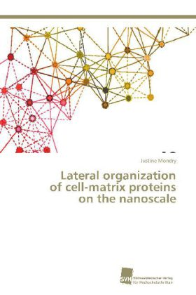Lateral organization of cell-matrix proteins on the nanoscale | Dodax.ch