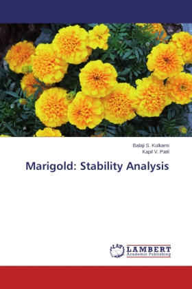Marigold: Stability Analysis | Dodax.at