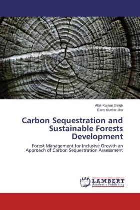 Carbon Sequestration and Sustainable Forests Development | Dodax.ch