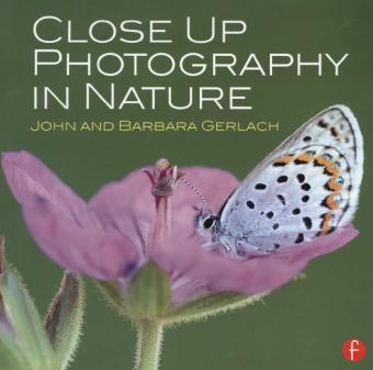 Close Up Photography in Nature | Dodax.de