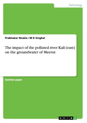 The impact of the polluted river Kali (east) on the groundwater of Meerut | Dodax.ch