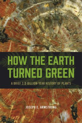 How the Earth Turned Green | Dodax.ch