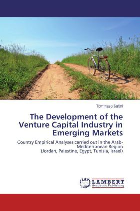 The Development of the Venture Capital Industry in Emerging Markets | Dodax.at