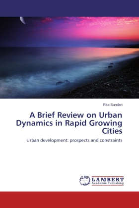 A Brief Review on Urban Dynamics in Rapid Growing Cities | Dodax.nl