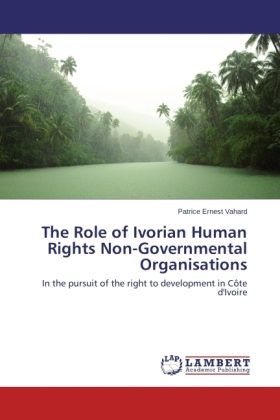 The Role of Ivorian Human Rights Non-Governmental Organisations | Dodax.ch