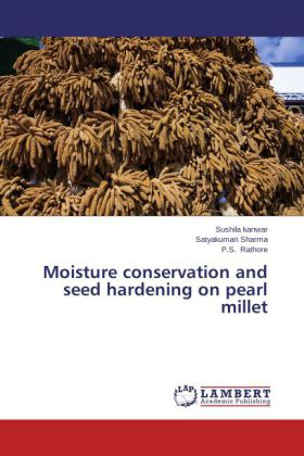 Moisture conservation and seed hardening on pearl millet | Dodax.pl