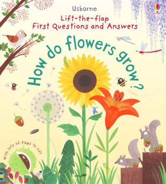 How do flowers grow? | Dodax.co.uk