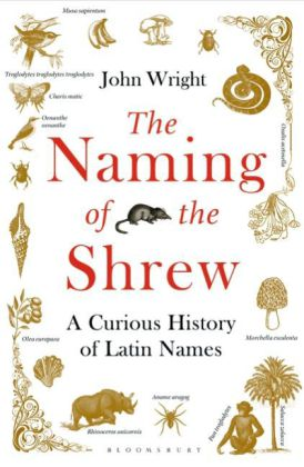 The Naming of the Shrew | Dodax.de