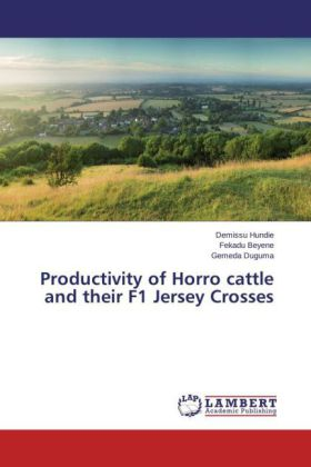 Productivity of Horro cattle and their F1 Jersey Crosses | Dodax.nl