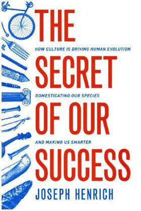 The Secret of Our Success | Dodax.at