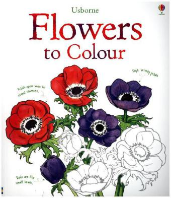Flowers to Colour | Dodax.co.uk