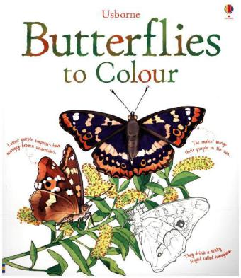 Butterflies to Colour | Dodax.de