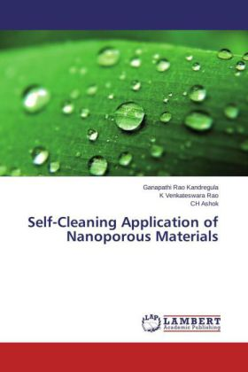 Self-Cleaning Application of Nanoporous Materials | Dodax.ch