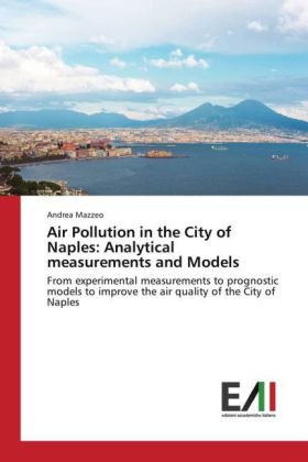 Air Pollution in the City of Naples: Analytical measurements and Models   Dodax.at