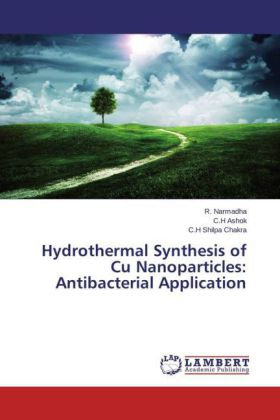 Hydrothermal Synthesis of Cu Nanoparticles: Antibacterial Application | Dodax.ch