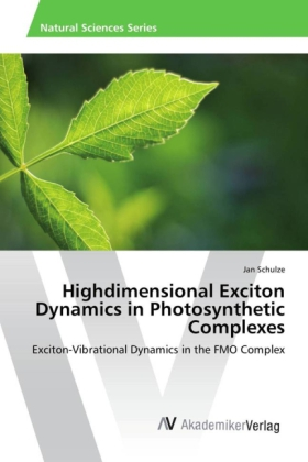 Highdimensional Exciton Dynamics in Photosynthetic Complexes | Dodax.ch