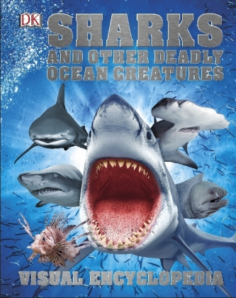 Sharks and Other Deadly Ocean Creatures | Dodax.ch