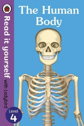 The Human Body | Dodax.ch