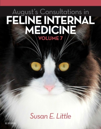August's Consultations in Feline Internal Medicine. Vol.7 | Dodax.ch