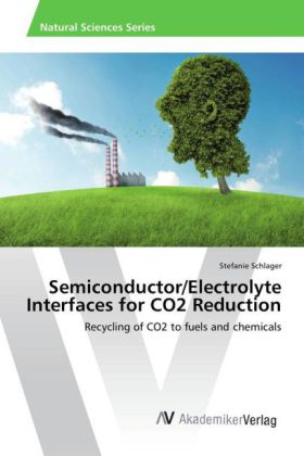 Semiconductor/Electrolyte Interfaces for CO2 Reduction | Dodax.pl