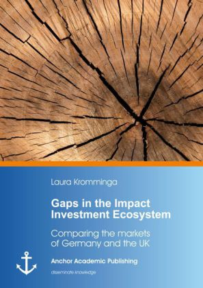 Gaps in the Impact Investment Ecosystem. Comparing the markets of Germany and the UK | Dodax.de
