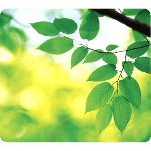 Fellowes - Mouse Pad, Earth Series Leaves (5903801) | Dodax.ch
