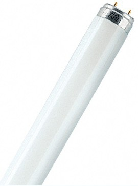 Leuchtstofflampe T8 lumil CW | Dodax.at