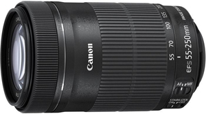 Canon EF-S 55-250mm f / 4.0-5.6 IS STM | Dodax.ch