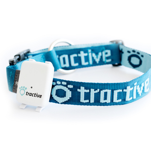 Tractive Halsband Large 45-70cm, 30mm | Dodax.at