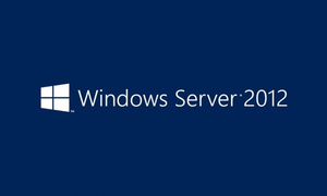 Microsoft Windows Server 2012 R2, Dell ROK | Dodax.ch