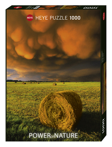 Rising Storm (Puzzle) | Dodax.ch
