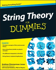 String Theory For Dummies | Dodax.at