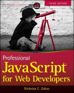 Wiley Professional JavaScript for Web Developers, 3rd Edition | Dodax.pl