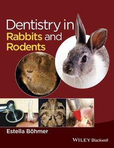 Dentistry in Rabbits and Rodents   Dodax.pl