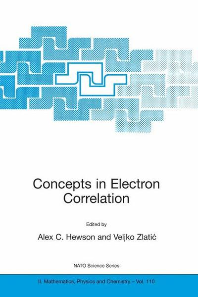 Concepts in Electron Correlation | Dodax.at