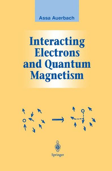 Interacting Electrons and Quantum Magnetism   Dodax.at