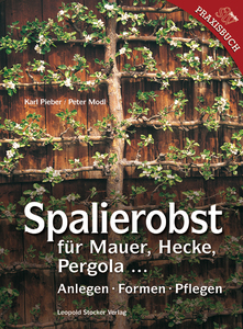 Spalierobst | Dodax.at