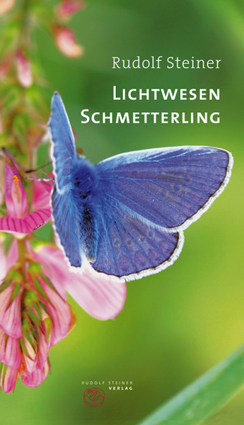 Lichtwesen Schmetterling | Dodax.co.uk