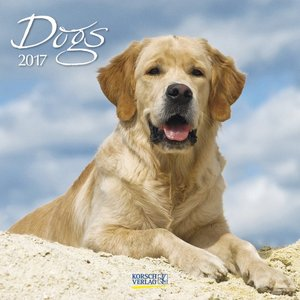 Dogs 2017 | Dodax.at