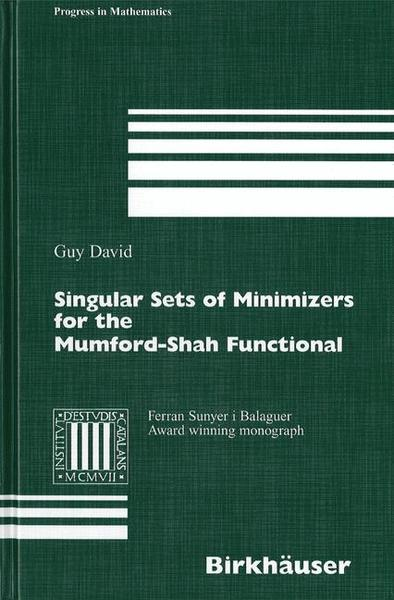 Singular Sets of Minimizers for the Mumford-Shah Functional | Dodax.ch