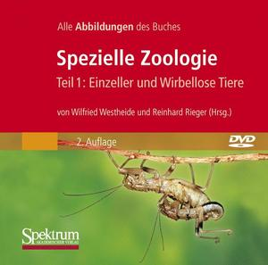 Spezielle Zoologie, CD-ROM. Tl.1 | Dodax.ch