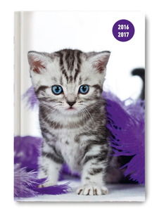 Collegetimer A6 day by day Cat 2016/2017 | Dodax.at