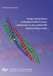 Design and Synthesis of Modified SNARE Proteins with Respect to the α‐SNAP/NSF Mediated Disassembly | Dodax.ch