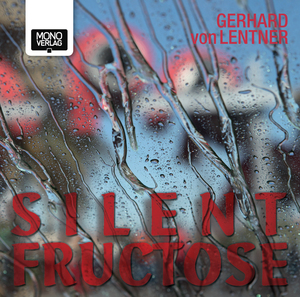 Silent Fructose, 1 Audio-CD | Dodax.ch