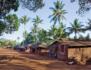 Healthy Homes in Tropical Zones | Dodax.at
