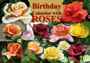 Birthday Calendar with ROSES | Dodax.ch