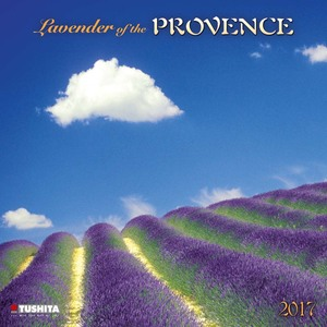 Lavender of the Provence 2017 | Dodax.ch