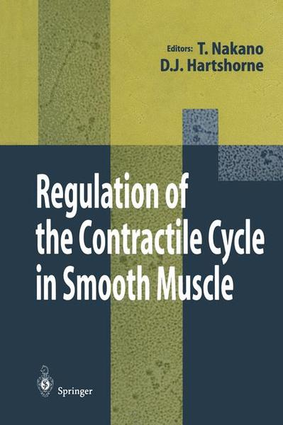 Regulation of the Contractile Cycle in Smooth Muscle   Dodax.pl